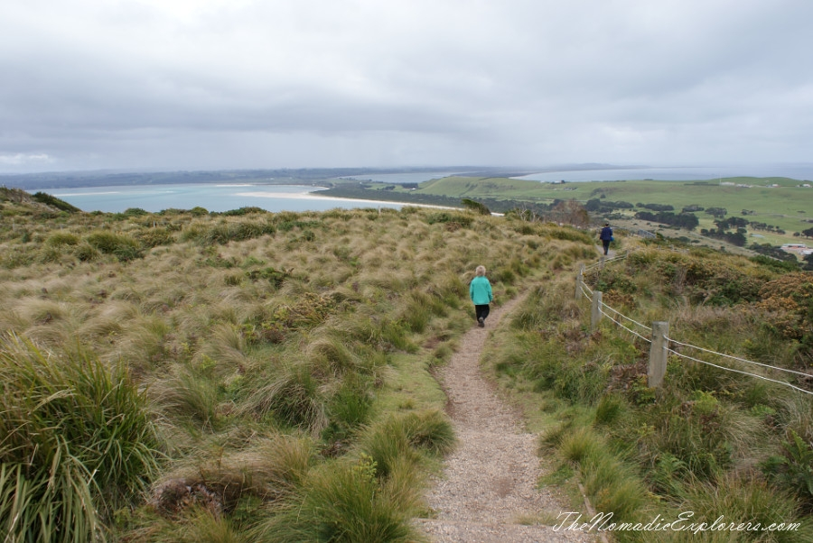 Australia, Tasmania, North West, Tasmania, Day 6. Stanley. 'The Nut' walk and meeting with echidnas! , ,