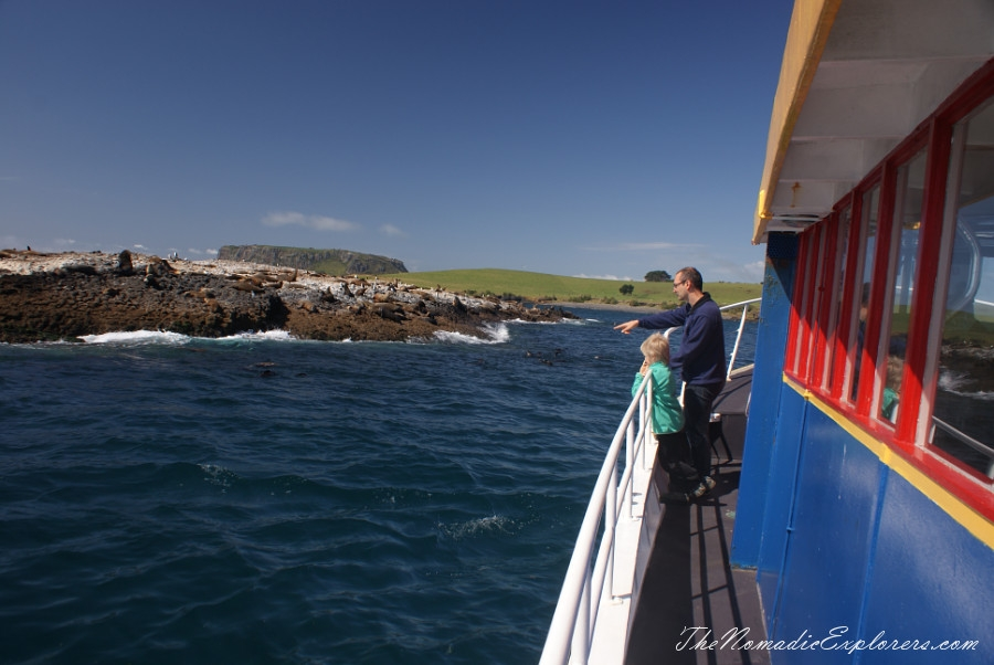 Australia, Tasmania, North West, Tasmania, Day 7. Stanley Seals Cruise, ,