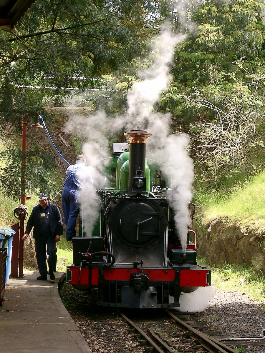 Australia, Victoria, Yarra Valley & Dandenong Ranges, Семейный отдых на выходных в Dandenong Ranges: Puffing Billy, Emerald Lake, кормление попугаев, ,