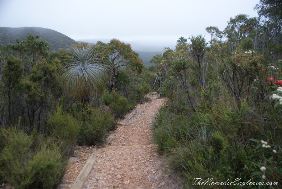 Australia, Western Australia, South West, Western Australia Trip. Day 5. Stirling Ranges National Park - Bluff Knoll Walk, ,