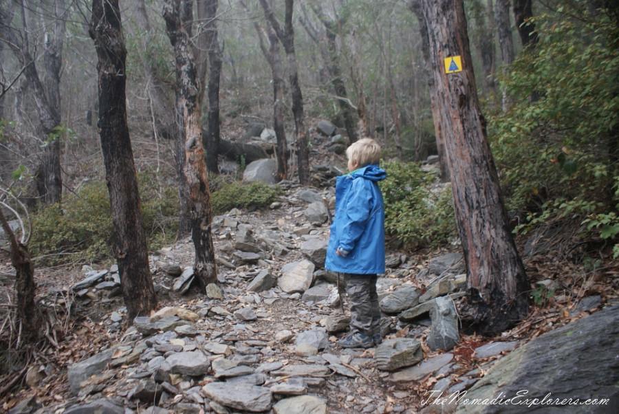 Australia, Western Australia, South West, Western Australia Trip. Day 5. Stirling Ranges National Park - Bluff Knoll Walk, ,