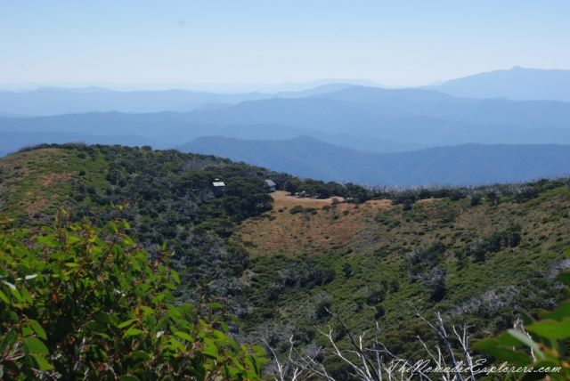 Australia, Victoria, Hight Country, The Australian Alps: Mt Feathertop via The Razorback, ,