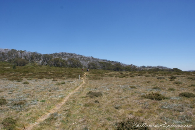 Australia, Victoria, Hight Country,  The Australian Alps - Mt Cope (Bogong High Plains near Falls Creek), ,