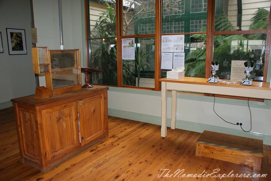 Australia, Достопримечательности Beechworth: мед, золотые прииски и прочие приключения, ,