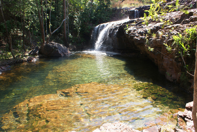 Australia, Northern Territory, Darwin and Surrounds, Litchfield National Park - Lower Cascades Walk, ,