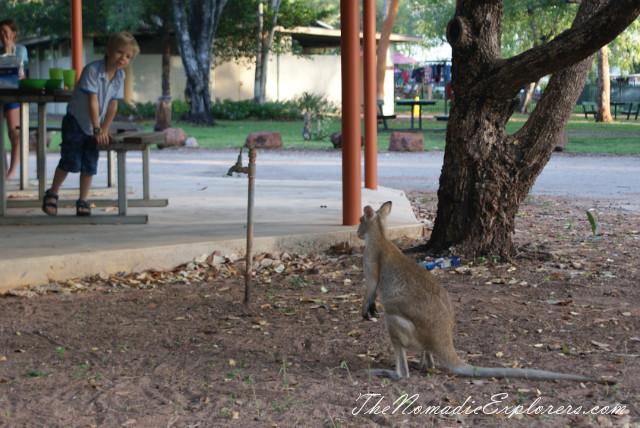Australia, Northern Territory, Darwin and Surrounds, Kakadu and Surrounds, Katherine and Surrounds, Обзор кемпингов в Дарвине и национальных парках Litchfield, Nitmiluk и Kakadu , ,