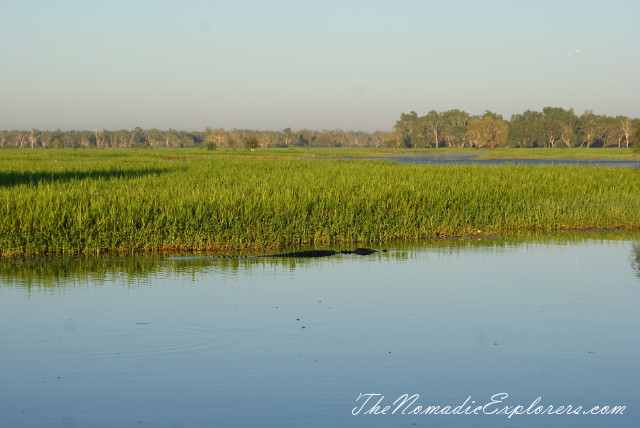 Australia, Northern Territory, Kakadu and Surrounds, Kakadu National Park. Yellow Water Billabong Cruise , ,