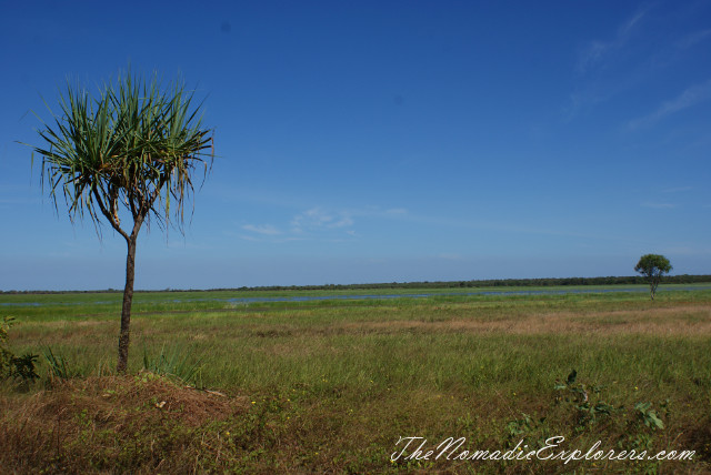 Australia, Northern Territory, Kakadu and Surrounds, Kakadu National Park. Mamukala Wetlands, ,