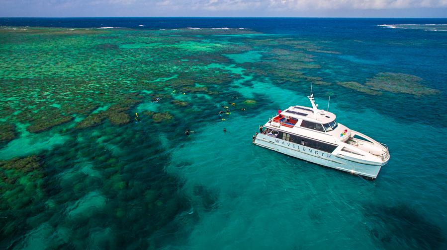 Australia, Queensland, The Great Barrier Reef, Поездка на Большой Барьерный риф с компанией Wavelength, ,