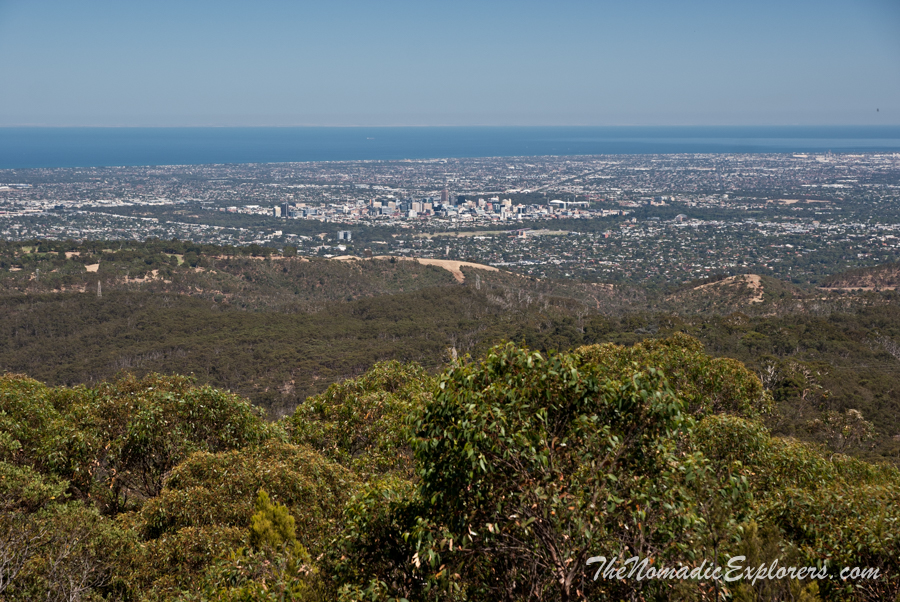 Australia, South Australia, Adelaide City, НГ в Аделаиде: День 4. Прогулка Waterfall Gully to Mount Lofty Summit Walk, ,