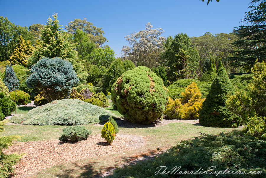 Australia, South Australia, Adelaide Hills, Mount Lofty Botanic Garden - Something for every season!, ,