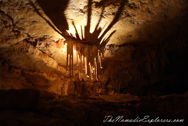 Australia, South Australia, Limestone Coast, Пещеры Naracoorte (Naracoorte Caves National Park), ,