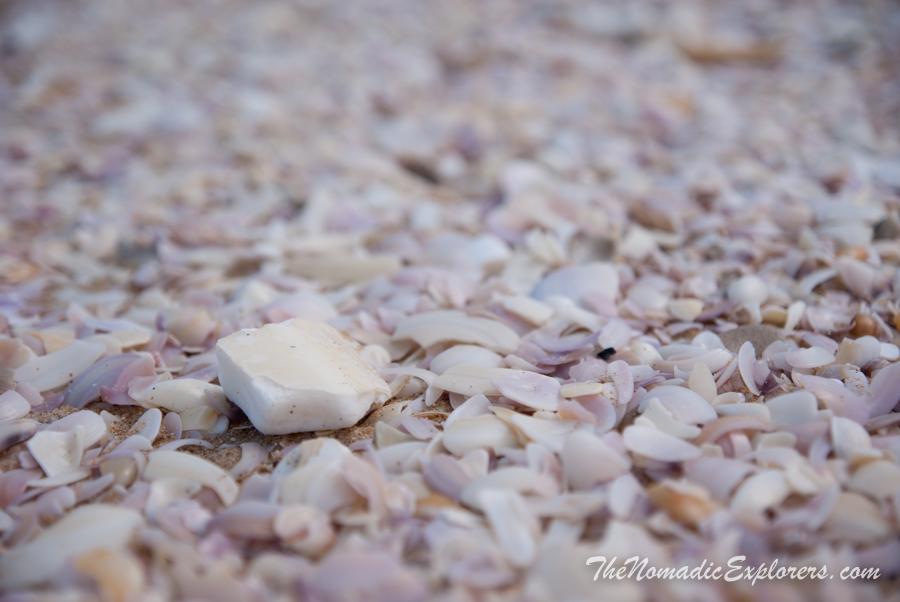 Australia, South Australia, Murray River, Lakes and Coorong, НГ в Аделаиде: День 2: Дорога от Kingston SE к Аделаиде с заездом в Coorong National Park, ,