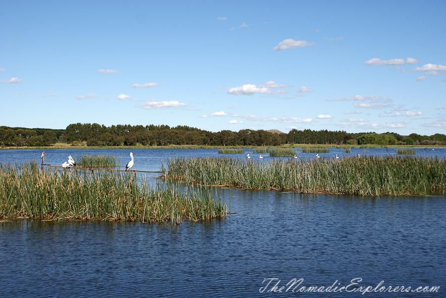 Australia, Victoria, Colac, Kanawinka Geo Park - Озера и кратеры, Australia, Victoria, Colac, Kanawinka Geo Park - Lakes and Craters Precinct