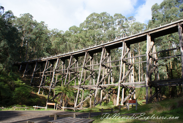 Australia, Victoria, Gippsland,One day in Noojee:  Trestle Bridge Rail Trail, Toorongo Falls via Amphitheatre Falls Loop Track,bridge, waterfall