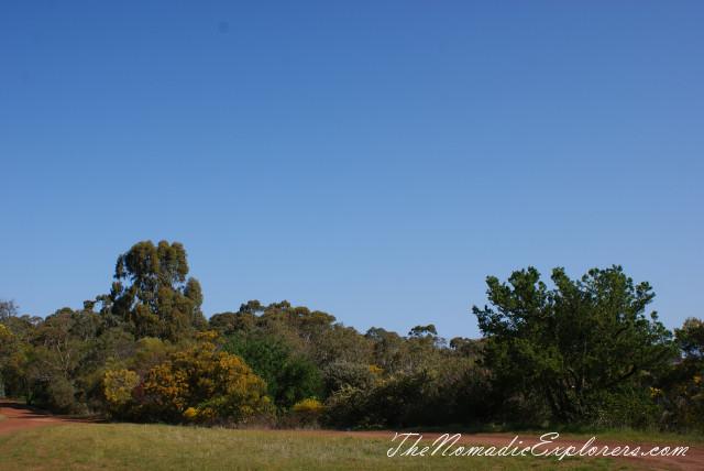 Australia, Victoria, Grampians, Долгий путь домой. Coleraine - Points Reserve Arboretum, ,