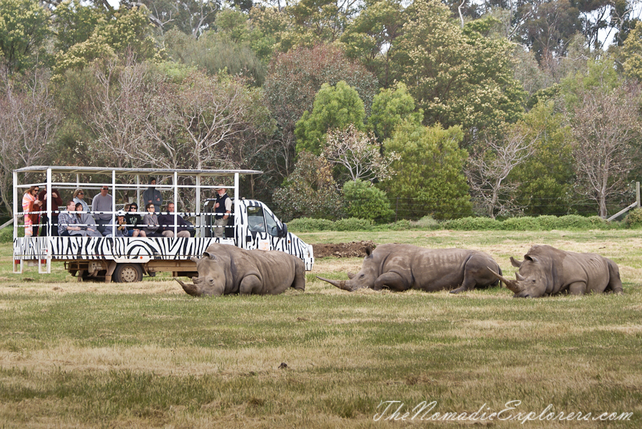 Australia, Victoria, Melbourne, Werribee Open Range Zoo: Lets Go Safari, ,
