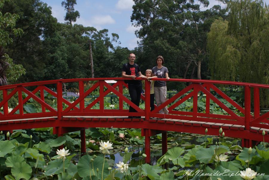 A walk in blue lotus water gardens the nomadic explorers for Garden design yarra valley